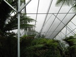 Fernery Shade Roof from the inside.jpg